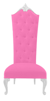 PINK WONDERLAND DINING CHAIR