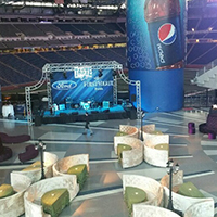 NFL Taste of the Lions, May 2015