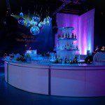 Disney Upfront 24 ft diameter bar img
