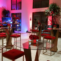 The Red Event, Playa Vista February 2016